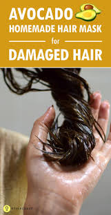 the 27 best images about home made hair on pinterest dry damaged