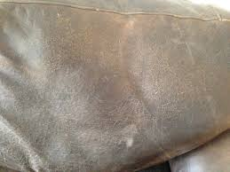 with vinegar a white steam couch can you how to a couch at home