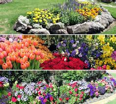 Perennial Garden Design Ideas Design Ideas Flower Garden Pictures Peenmedia