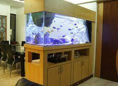 Aquarium Room Divider Marine Room Divider Aquarium Size 72x24x18 Inch From Prime