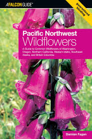 pacific northwest wildflowers a guide to common wildflowers of
