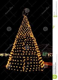 outdoor tree lights stock photography image