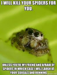 Afraid Of Spiders Meme - i will kill your spiders for you unless you re my friend and afraid