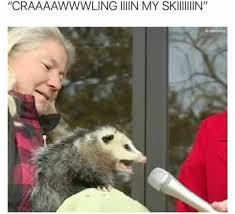 Extreme Memes - meme extreme home facebook