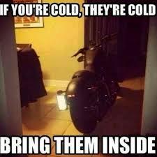 Harley Davidson Meme - best harley riding memes let s see em page 8 harley