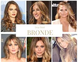 bronde hair home coloring drop dead bronde the latest advance in enigmatic color hair by joey