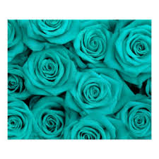 turquoise roses image result for turquoise tattoo design reference board