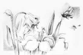 drawings easy easy drawing flowers rose pencil drawing of rose