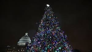 Christmas Tree Stop - capitol tree to stop in springfield on trip to d c