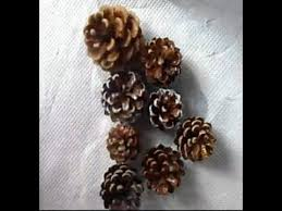 Decorating Pine Cones With Glitter 9 Best Christmas Decorations Images On Pinterest Christmas