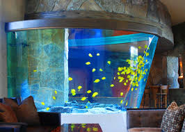 Home Aquarium by Home Calaquaria