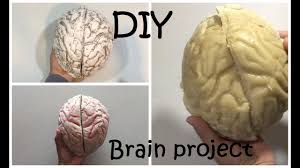 how to make a brain project diy brain 42 youtube