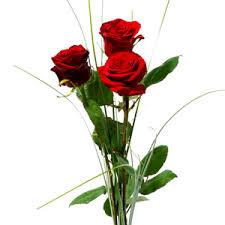 Flowers For Sale Flowers Delivery Send Flowers Buy Flowers Order Flowers