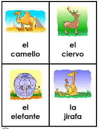 132 best images about enb dual language preschool french spanish