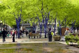 blue trees where s my backpack