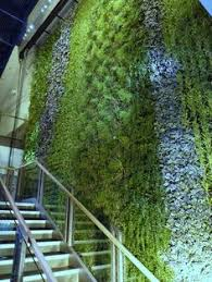 Vertical Gardens Miami - 10 cool indoor vertical garden design examples digsdigs