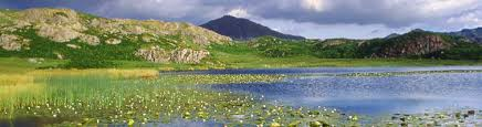 Holiday Cottages In The Lakes District by Lake District Cottages Self Catering Holiday Cottages In The