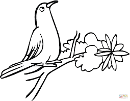 pigeon stands on tree coloring page free printable coloring pages