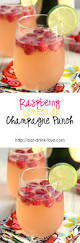 raspberry lemonade champagne punch delicious drink recipes