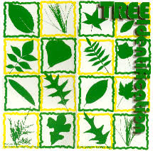 scfc tree identification for sc