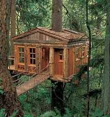 treehouse home plans tree house archives the tiny life