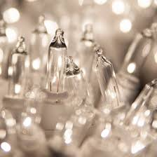 white lights 50 clear tree mini lights 2 5