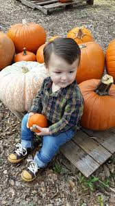 pumpkin images free download free images fall boy spring autumn pumpkin child season