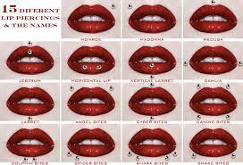 piercing lip rings images Lip piercing types rich image and wallpaper jpg