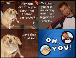 Oh You Dog Meme - oh you know your meme