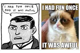 Grumpy Cat Meme I Had Fun Once - kate beaton talks superheroes and brontë sisters vulture