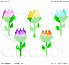 cartoon of colorful tulip flowers royalty free vector clipart by