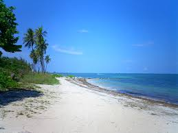 Florida beaches florida 39 s secluded beaches travel