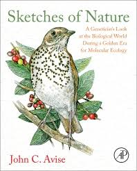 sketches of nature 1st edition
