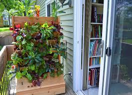 plant a vertical wall garden vegetable farm shawna coronado