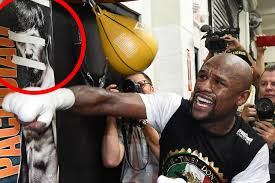 mayweather money cars floyd mayweather media workout mirror online