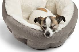 Cave Beds For Dogs Best Friends By Sheri Orthocomfort Deep Dish Cuddler Ilan Dog Bed