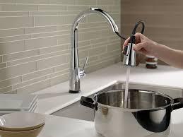 delta faucet 9113t dst essa single handle pull down kitchen faucet