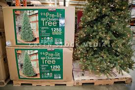 packages of tree in store green stock media
