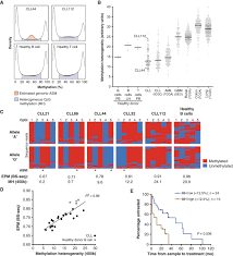 evolution of dna methylation is linked to genetic aberrations in