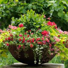 Porch Planter Ideas by 109 Best Planters Images On Pinterest Flowers Garden Flowers