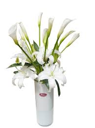 Calla Lily Flower White Lily And Calla Lily Flower Arrangement Hd Picture Flowers