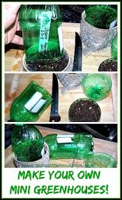 make your own mini greenhouses diy for seedlings laura u0027s