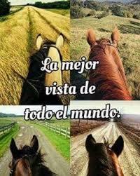 imagenes vaqueras y fraces frases vaqueras por siempre vaqueros instagram photos and videos