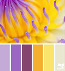 color combinations with purple