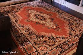 Buy Persian Rugs by When The Mr Says No Goodbye Persian Rug