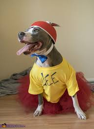 Tweedle Dee And Tweedle Dum Costumes Tweedle Dee And Tweedle Dumb Dogs Costume
