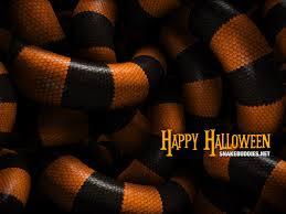 the snake pit u201d free halloween desktop wallpaper snake buddies