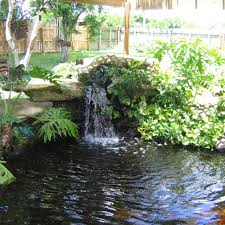 backyard pond design backyard swimming pond designs picture on