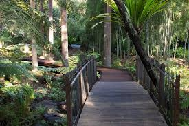 Botanical Gardens Melbourne Royal Botanic Gardens Melbourne S Fern Gully Reopens Abc News