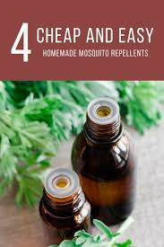 Backyard Mosquito Repellent by Cheap And Easy Homemade Mosquito Repellents